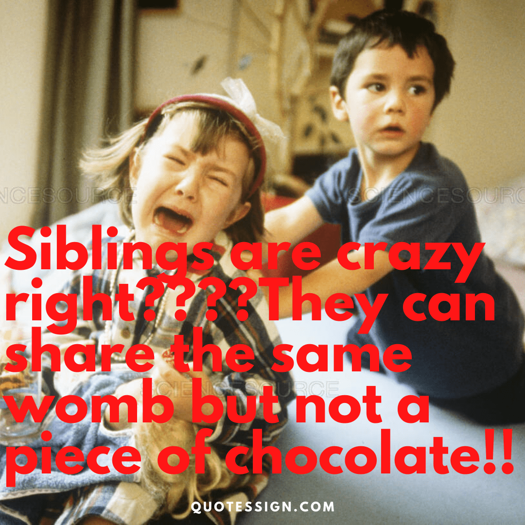brother sister love quote